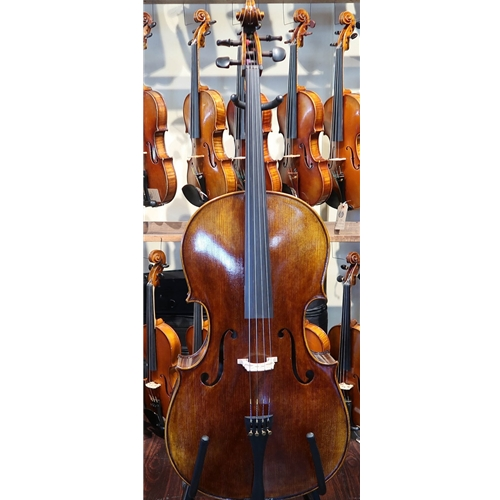 Global Antiqued IC70 Cello